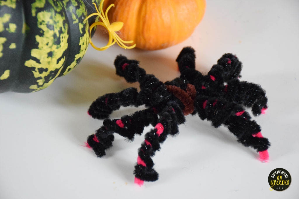 Pipe-cleaner spider