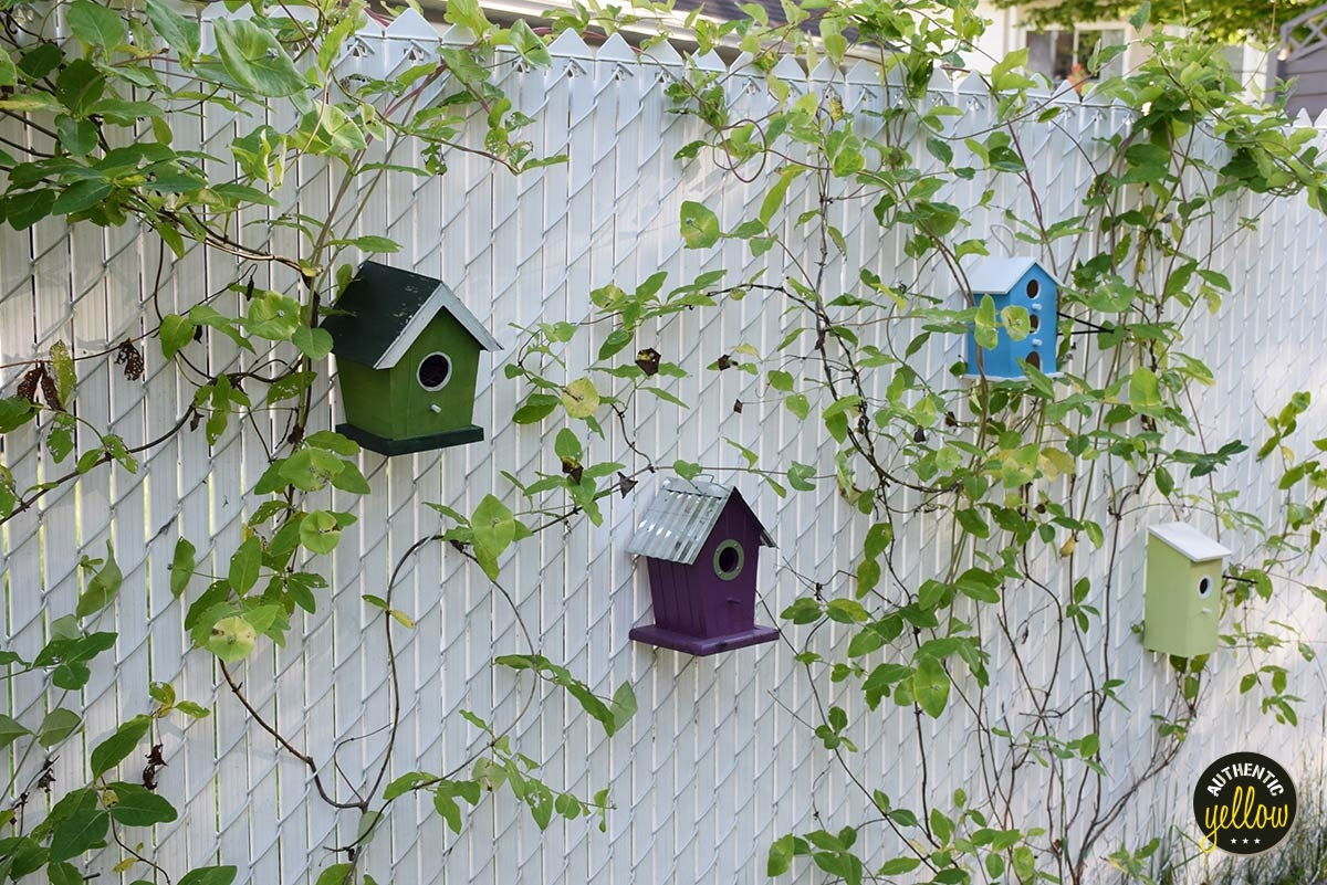 Birdhouses on white chain link fence